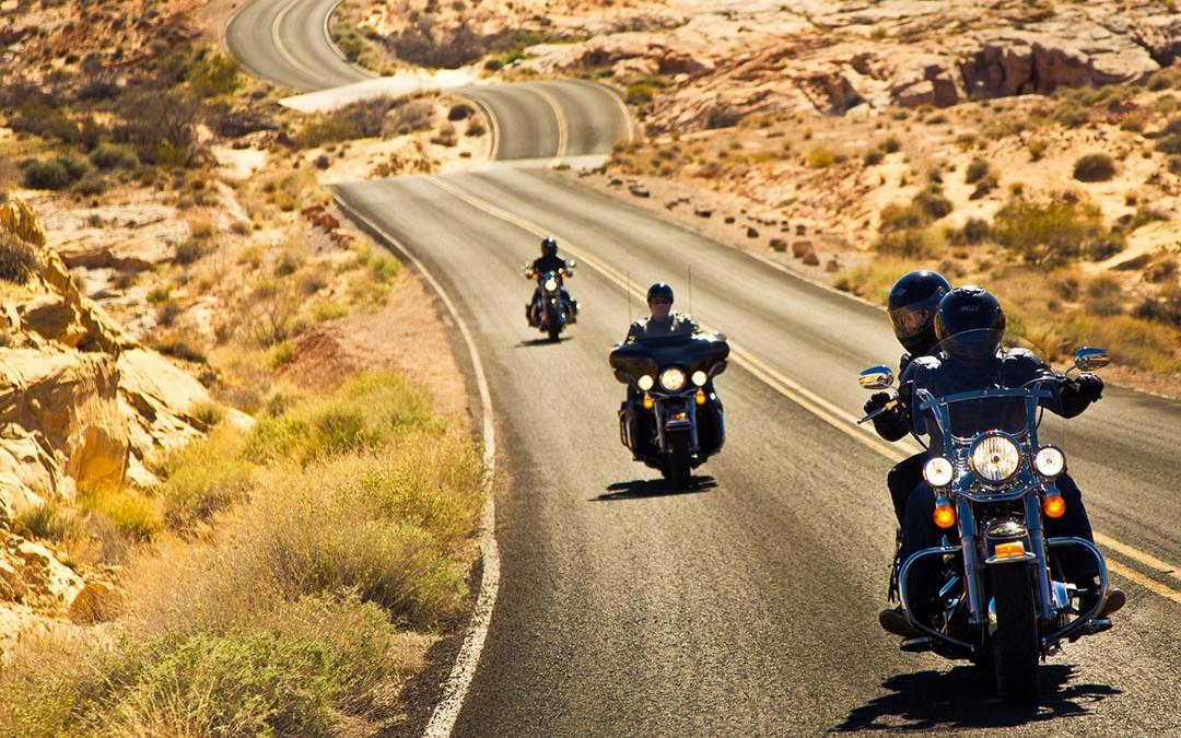 Viaggia in sella ad un Harley Davidson