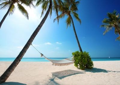 Maldive Speciale Inverno